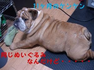 Pic_0065